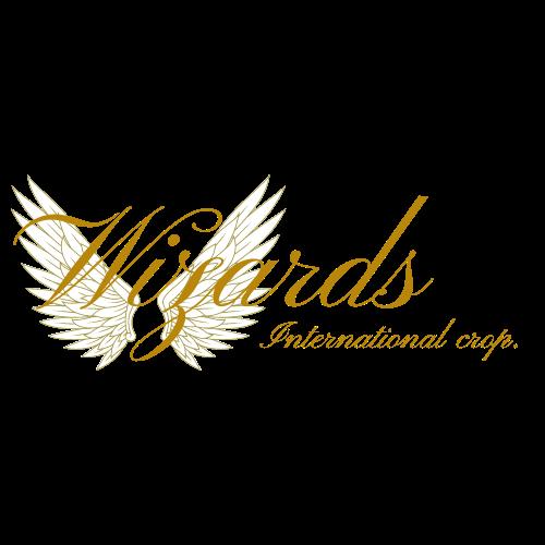 Wizards International corp